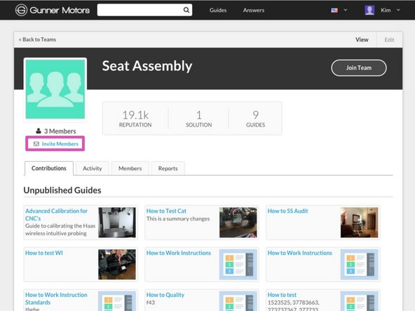 Click the Invite Members button in the top left of the page, just below the Team avatar.