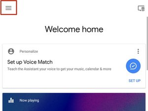 Google Assistant Setup