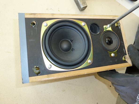 Remove the screws from the front of the speakers.